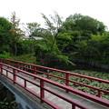 teramachi_035
