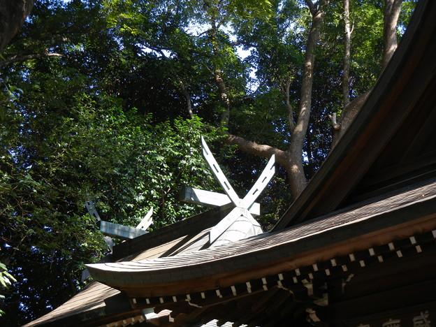 本殿-春日神社 (川崎市中原区宮内)