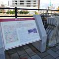 Photos: 西国街道と猿猴橋 案内板 広島市南区的場町
