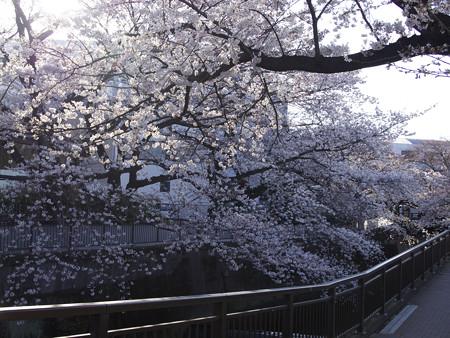 東宝撮影所(3)
