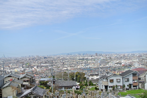 墓からの眺め (1)
