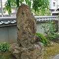Photos: 地蔵院(椿寺) (5)