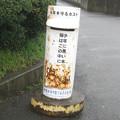 徳島本線学駅前の白ポスト、だいたい正面。(2015年)