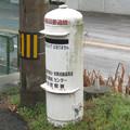 徳島県の徳島本線江口駅前の白ポスト、向かって右。(2015年)