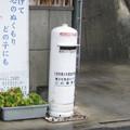 徳島県三好市の道の駅三野の白ポスト、向かって左。(2015年)