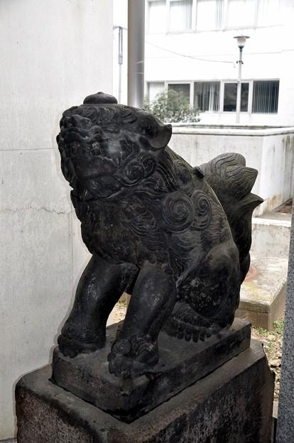 Photos: 築土神社6