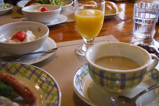 伽羅木の朝食
