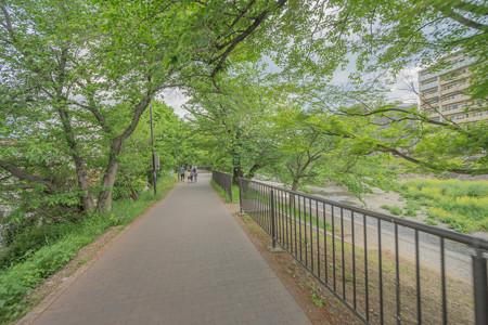 #3 芥川桜堤公園