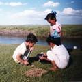 写真: トリオ・ロス・ニーニョス  モンゴル Orkhon river,Mongolia *草原の遊びに耽る子供らに短き夏の過ぎゆかんとす