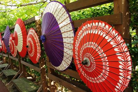 虹の郷 和傘