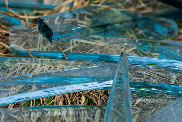 不法投棄のガラス@荒川土手