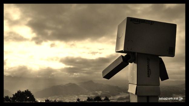 悠久の時を越えて~古都、奈良を望む~