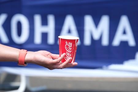 2015.05.17 2015世界トライアスロンシリーズ横浜大会 水