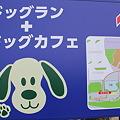 Photos: NEOPASA駿河湾沼津 下り側地図