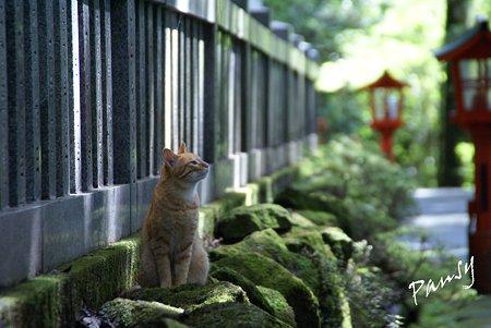 箱根にて・・3