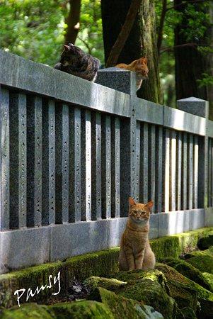 箱根にて・・5