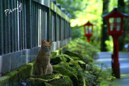 箱根にて・・6