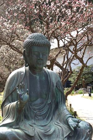 北鎌倉-392