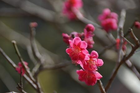 北鎌倉-052