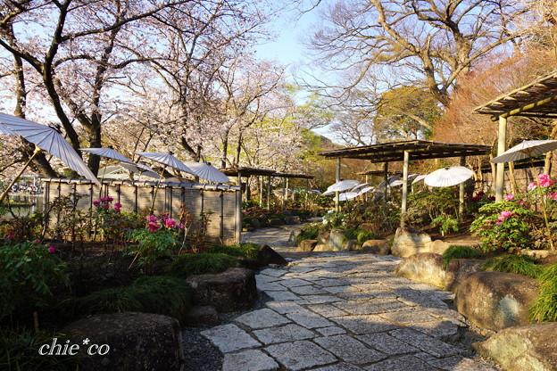 鎌倉-185