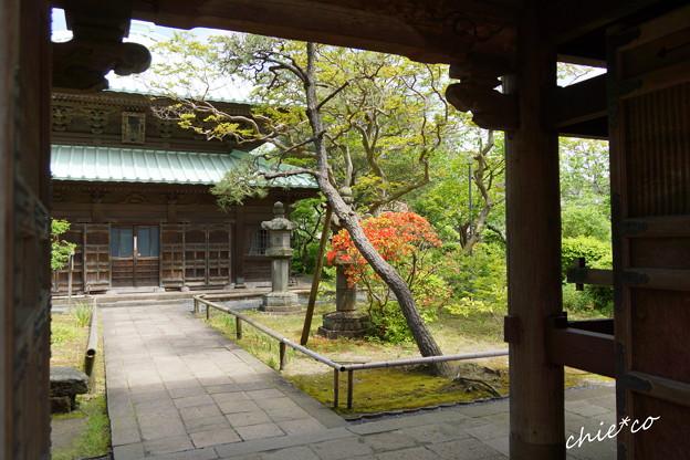 鎌倉 英勝寺-289