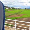 Photos: 0730豪雨007