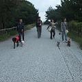 Photos: 県立淡路島公園を散歩