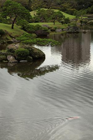 水前寺成趣園- 06