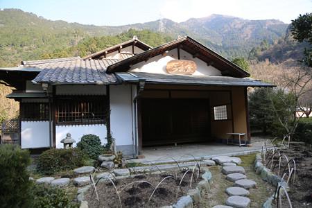 別子銅山〔マイントピア別子端出場ゾーン〕 - 15