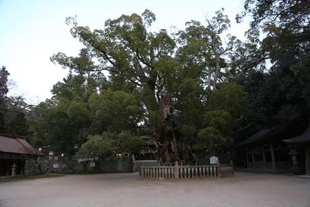 大山祇神社 - 03