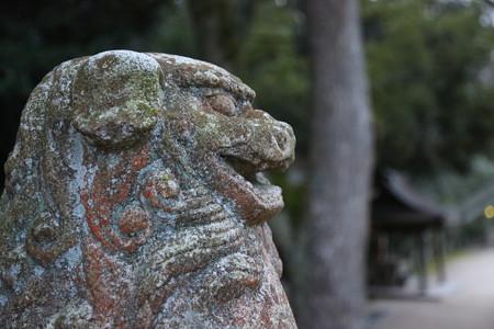 大山祇神社 - 05
