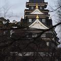 Photos: 岡山城の天守閣