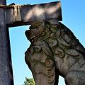 Photos: 住吉大社鳥居の狛犬阿形