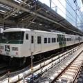185系踊り子115号3035M東京8番発車直前