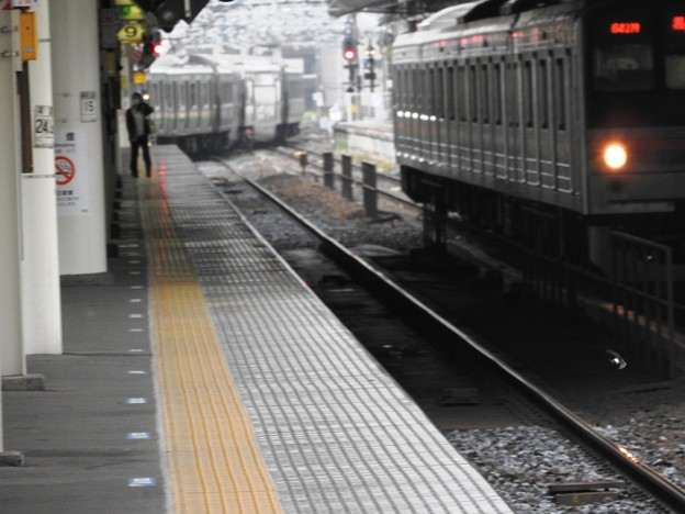Photos: イワツバメも行き交う朝の宇都宮駅構内