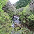 Photos: 110510-14男橋から上流側