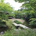 Photos: 110517-55芳松庵の庭
