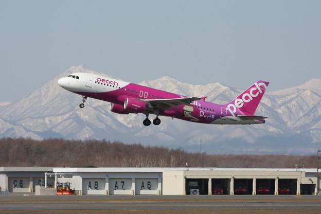 A320 Peach Rune JA804P