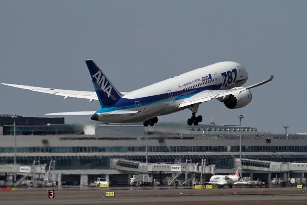 B787-8 JA818A Takeoff