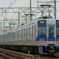 Photos: 南海電車