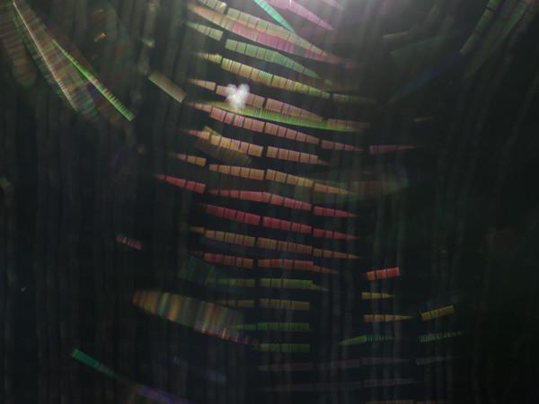 虹色の階段を登る天使?