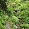 Photos: 風波トンネル