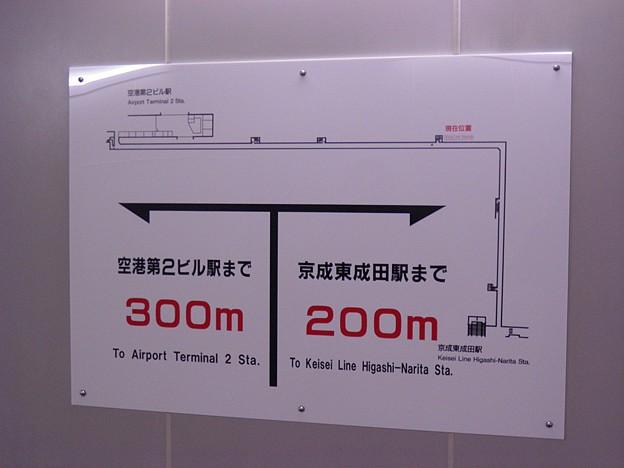 P1250059