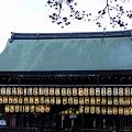 写真: 18八坂神社02