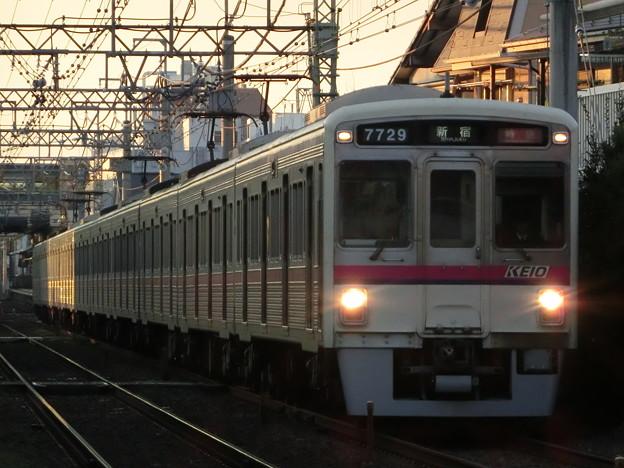 Photos: 京王7000系(7729F) 特急新宿行き