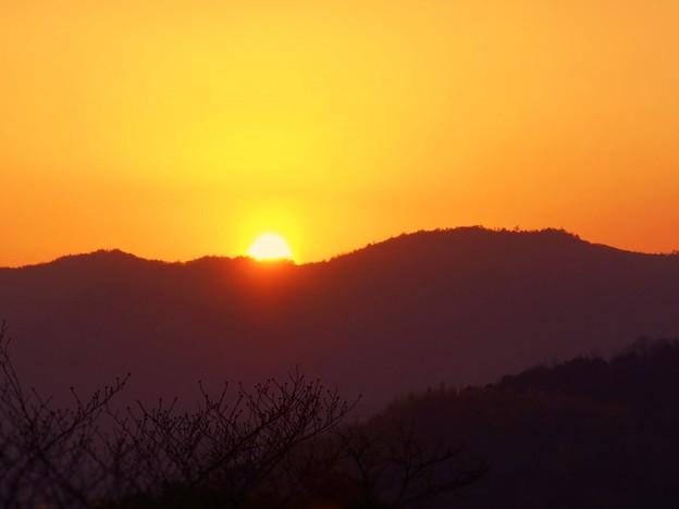 桜はまだ蕾~春分の日の夕陽 in 千光寺山~