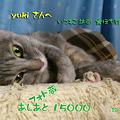 Photos: yukiさんへ 有難う~