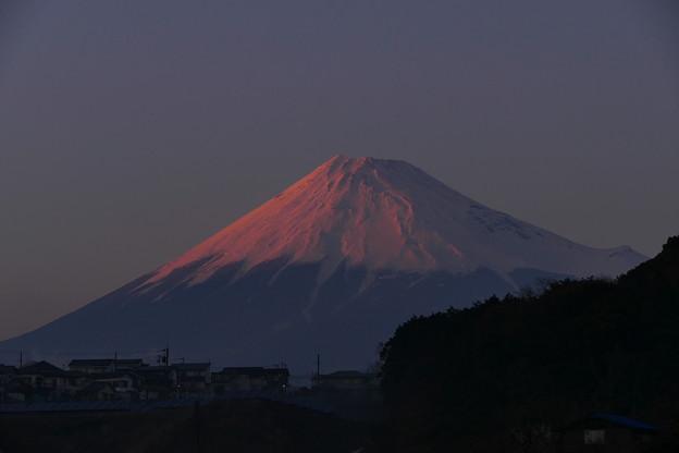 3.14の紅富士