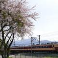 Photos: ホリデー快速 富士山
