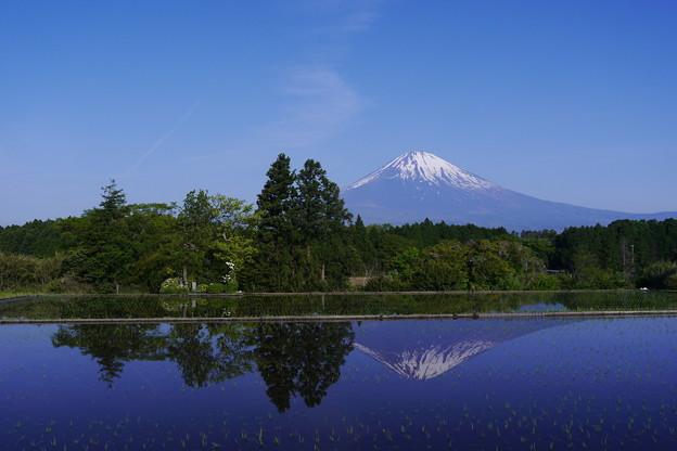 沼田の逆さ富士